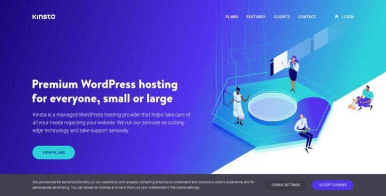 kinsta review | kinsta homepage